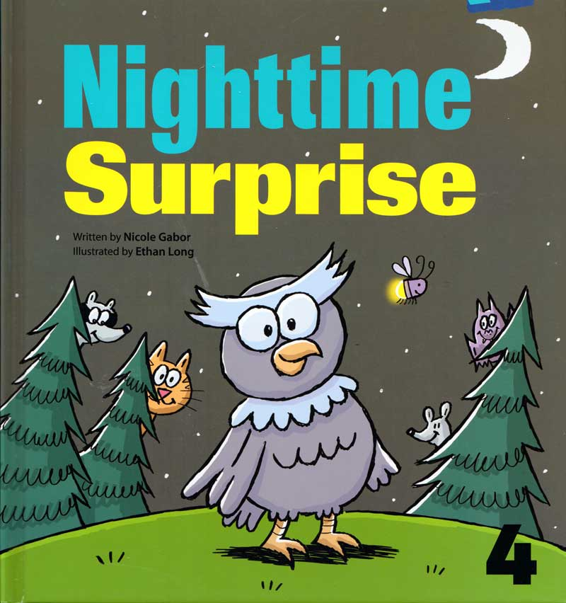 Nighttime Surprise cover art
